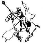 NZ Polocrosse